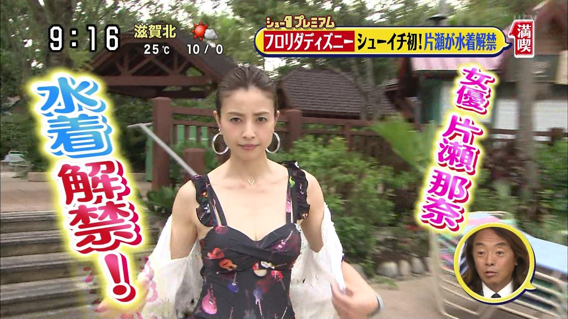 片瀬那奈の水着姿エロ画像001