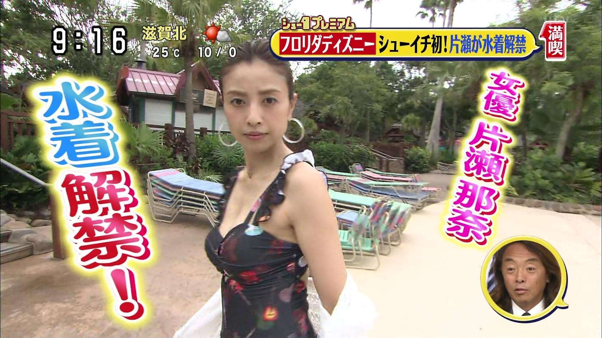 片瀬那奈の水着姿エロ画像003