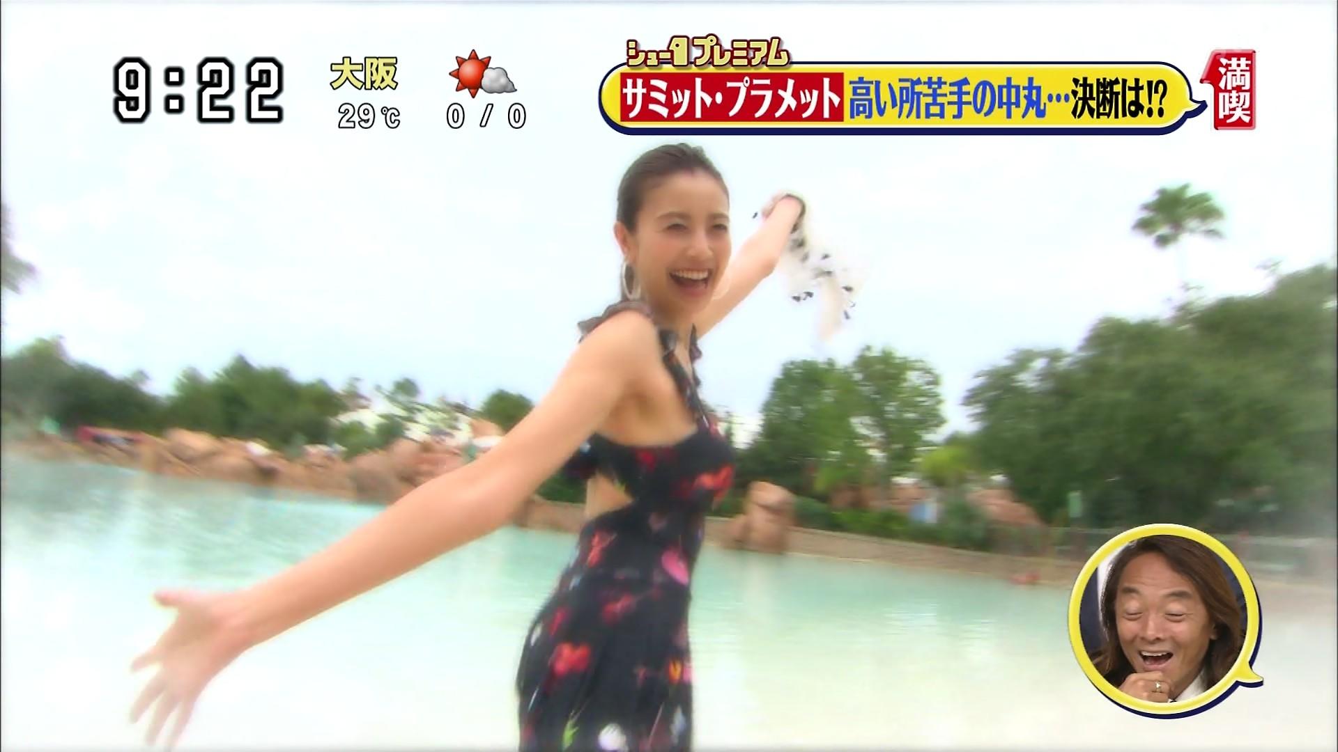 片瀬那奈の水着姿エロ画像033