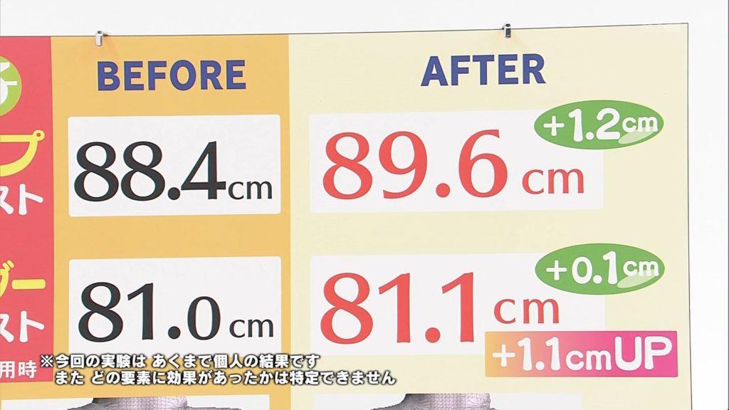 尼神インター渚が乳首を完全ポロリする放送事故エロ画像23枚・27枚目の画像