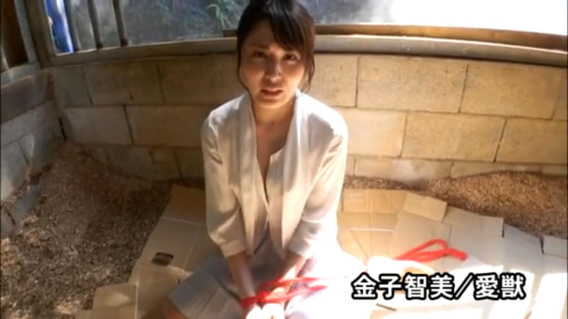 金子智美のイメージDVDエロ画像070