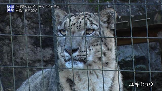 森田望智の『情熱大陸』で公開された濃厚濡れ場エロ画像059
