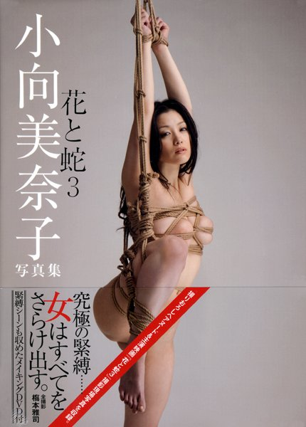 逮捕された小向さんが受けた拷問がこれwwwwwww★小向美奈子エロ画像・8枚目の画像