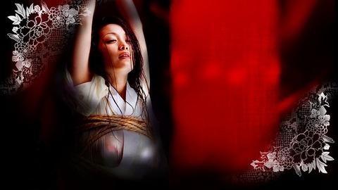 逮捕された小向さんが受けた拷問がこれwwwwwww★小向美奈子エロ画像・15枚目の画像
