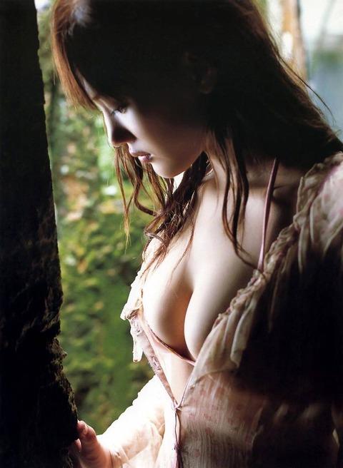 大人になった綾瀬はるかの着衣胸がやばいエロくて抜いたwwwwwww★綾瀬はるかエロ画像・12枚目の画像